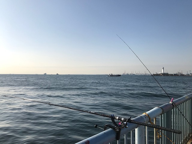 海 釣り 大黒
